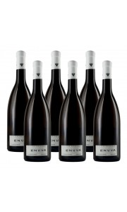 Enuva, Vino Blanco Joven Afrutado. 750 ml. Caja 6 unidades